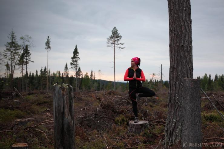 yoga i skogen