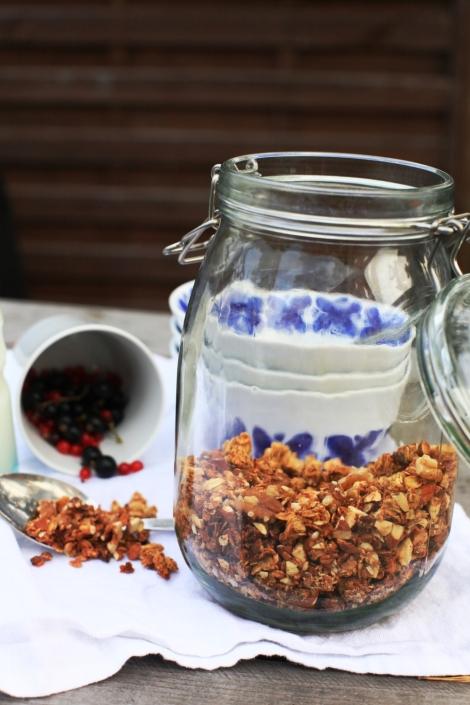 hemgjord crunchy granola 2