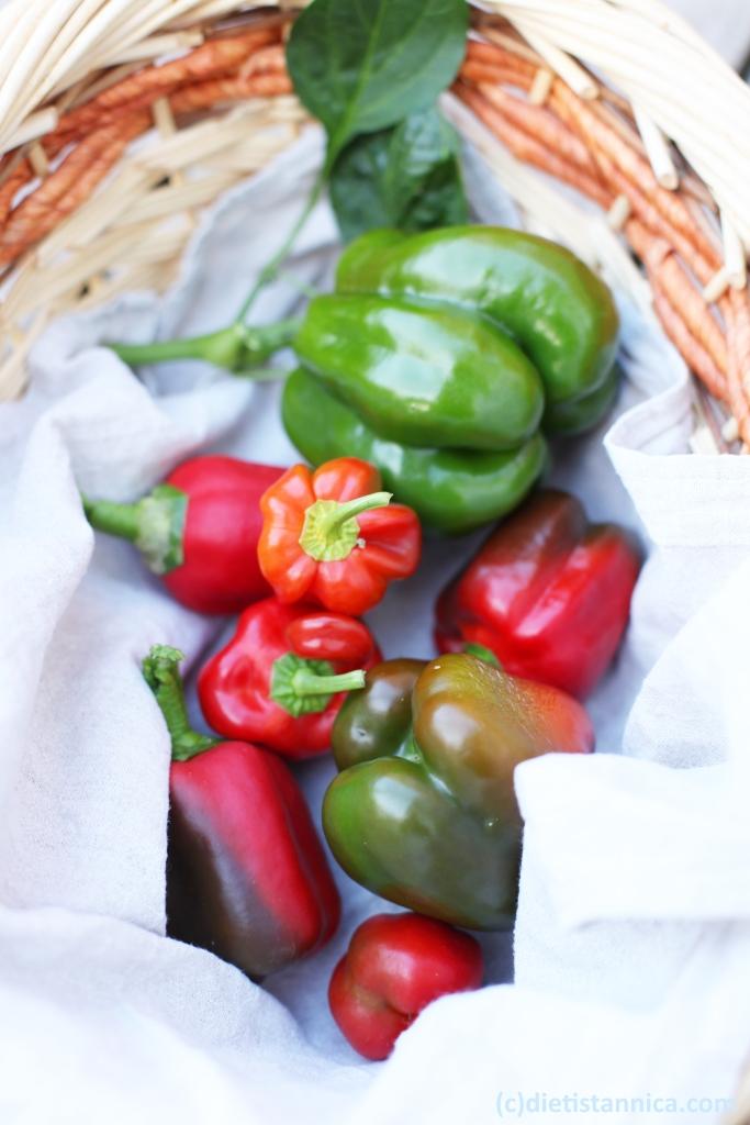 paprikor odla egen paprika ekologisk paprika