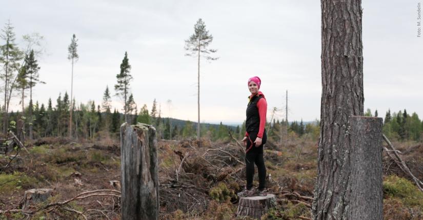 jogging östersund annica långvall