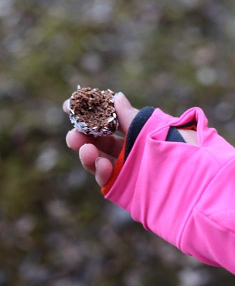 hälsosamma nyttiga chokladbollar utan dadlar med nötter och honung 2