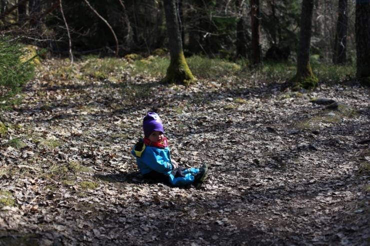 Lida naturreservat sörmlandsleden 4