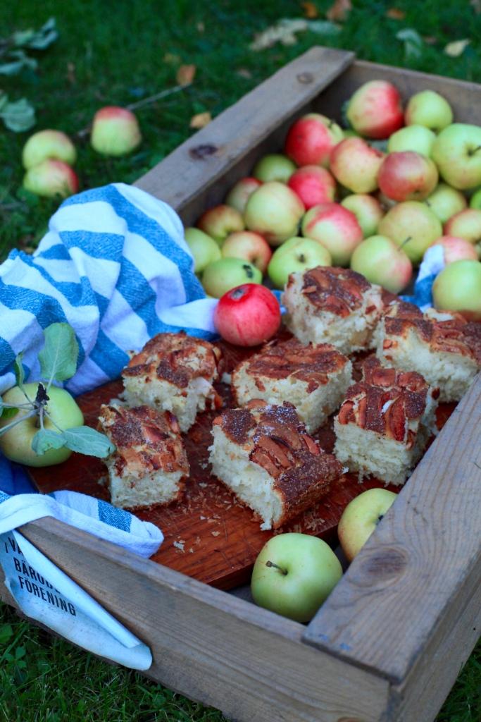 Äppelrutor äppelkaka sockerkaka med äpple och kanel baka med äpple