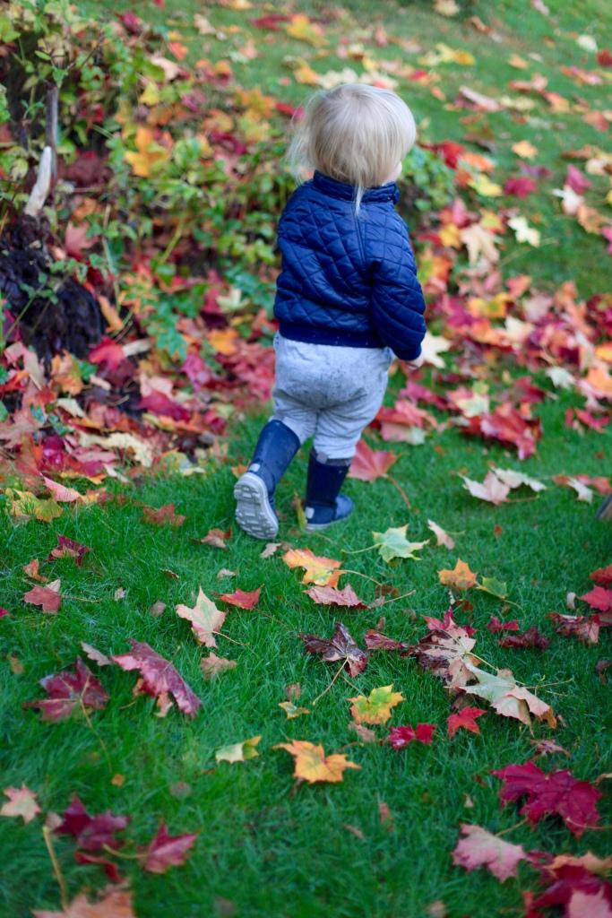 viggo springer bland löven